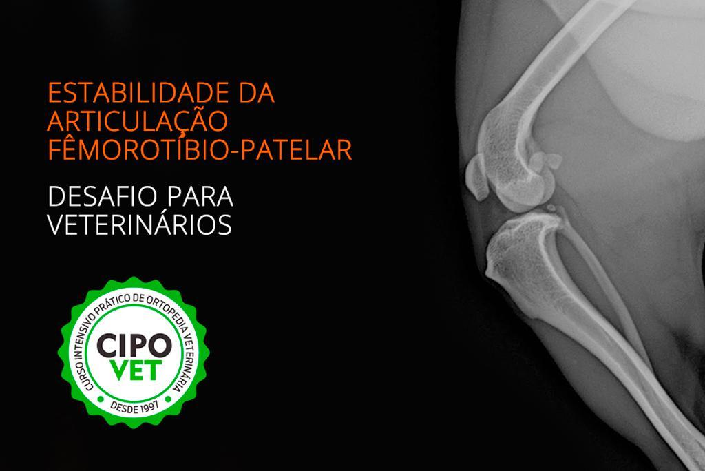 Articulação fêmorotíbio-patelar