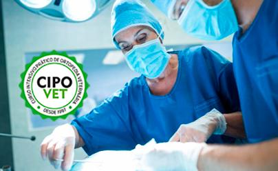 Curso Intensivo Prático de Ortopedia - Avançado