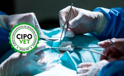 Curso Intensivo Prático de Ortopedia - Placas | 06/12/2019